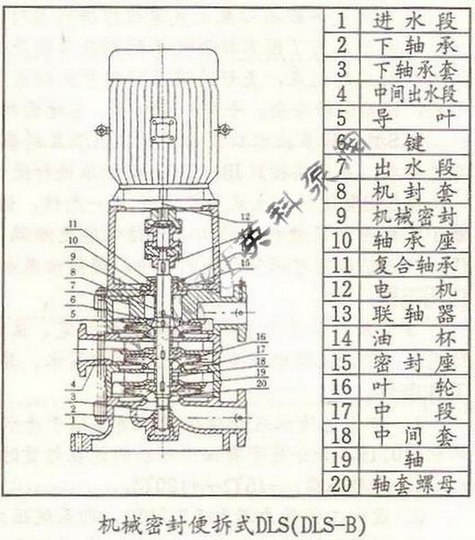 dls立式多级泵结构图