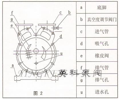 水环式真空泵结构图