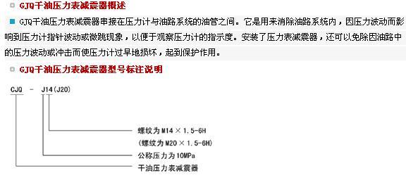 GJQ干油压力表减震器